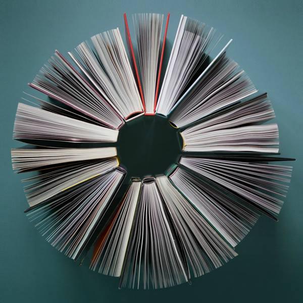 libri al centro direttore editoriale roberto ippolito logo